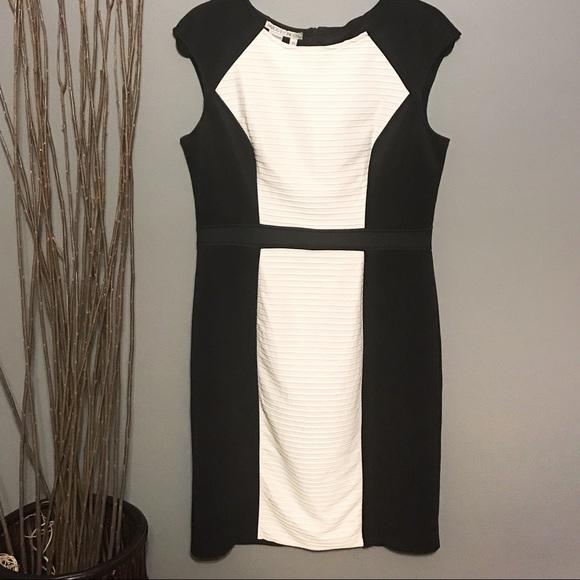 Maggy London Dresses & Skirts - Maggy London Colorblock Sheath Dress